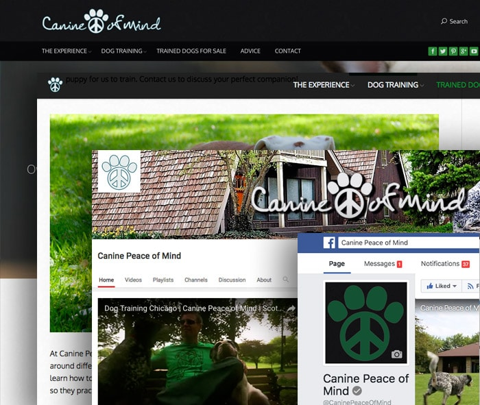 Branding, Online Marketing, Consonant Marketing, Nahville, TN