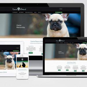 Responsive Web Design - Consonant Marketing