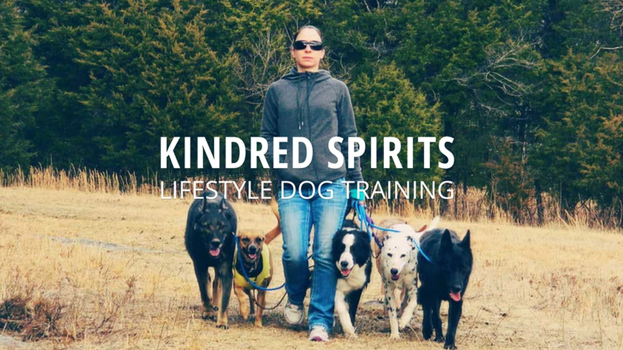 Project: Kindred Spirits Web Design